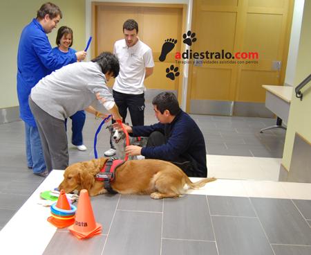 Terapia asistida por perros
